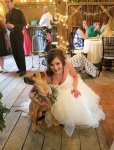 Tips for including your dog in your wedding ceremony - the bride and her dog