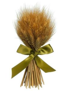 International Beer Day - Standing Preserved Wheat Grass Bundle